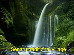Senaru-traditional-village