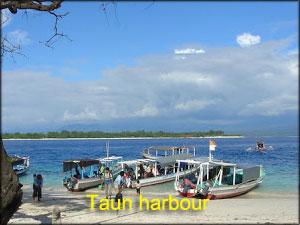 Taun-harbour
